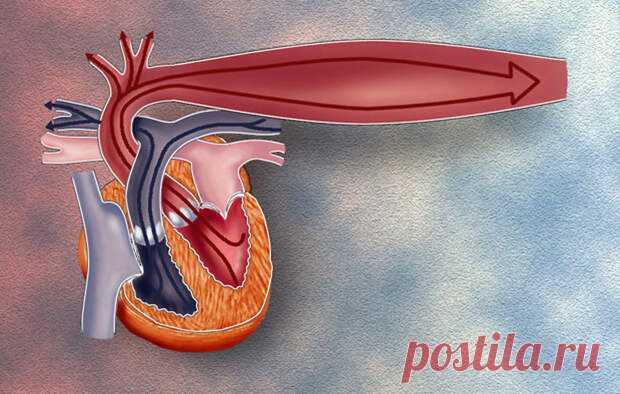 5 домашних средств, которые помогут контролировать повышенное давление - Будь в форме! - медиаплатформа МирТесен Экология здоровья. Народная медицина: Если вы принимаете какое-либо лекарство от гипертонии или другого заболевания, то ... Повышение артериального давления в медицинской терминологии известно как гипертония, и это один из главных врагов нашей сердечно-сосудистой системы. Повышение давления вызвано