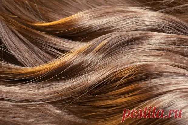 Как проверить, в порядке ли волосы, и что делать, если нет - Важно знать - медиаплатформа МирТесен