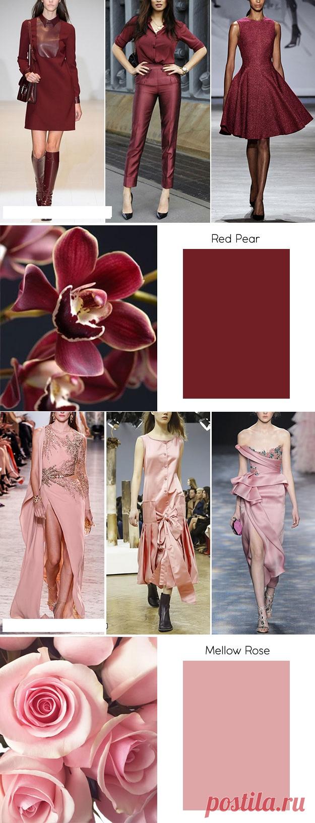 Модные цвета осень-зима 2018/2019 - Adfave