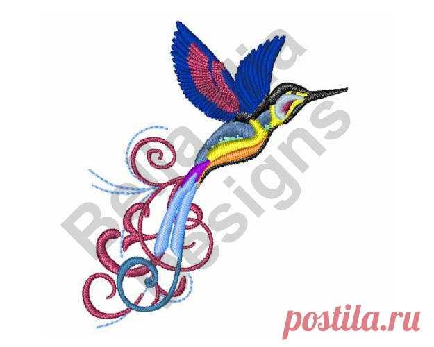 Colibrí - diseño de máquina del bordado, colorido pájaro - diseño de ...