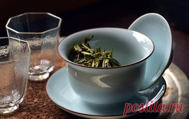 Доктор посоветовал пить зеленый чай: узнала, он может нести не только пользу, но и вред