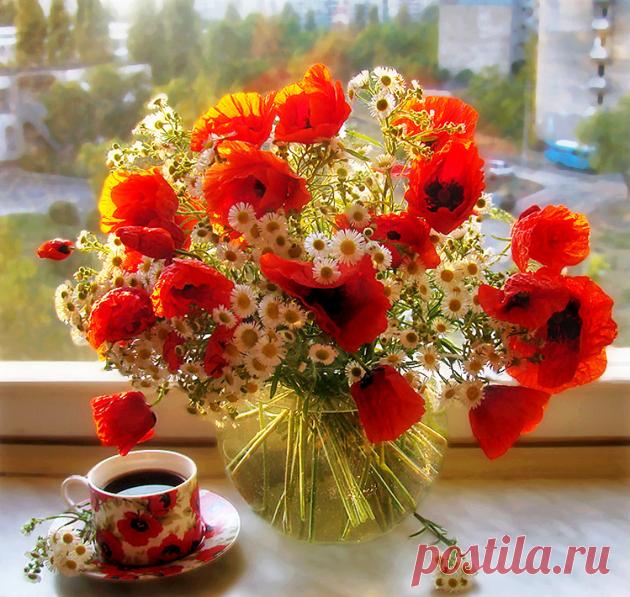 Открытки доброе утро и прекрасного дня с луговыми цветами мощь