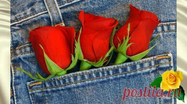 Нужно просто отрезать карманы на джинсах и вот какой будет результат - Калейдоскоп чудес Это помогает женщинам, чей вес постоянно меняется. А самое главное — это очень удобно для женщин в положении. Благодаря этому лайфхаку исчезают проблемы с изменением размера одежды. К примеру, когда …