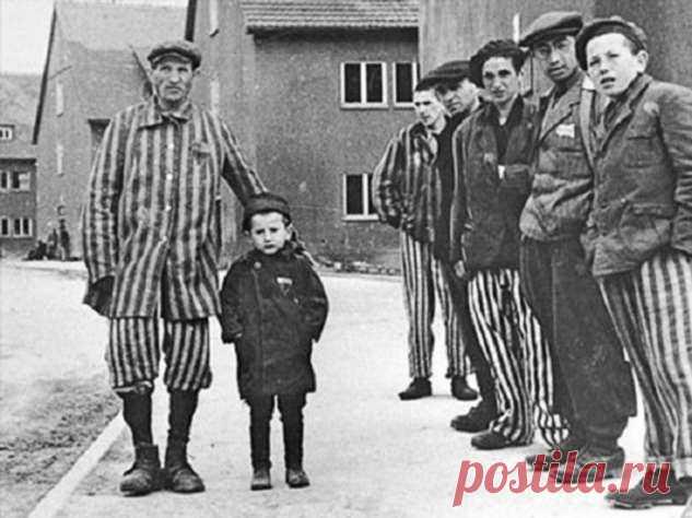 Реальная история мальчика, тайно жившего в концлагере Бухенвальд. | Офигенная