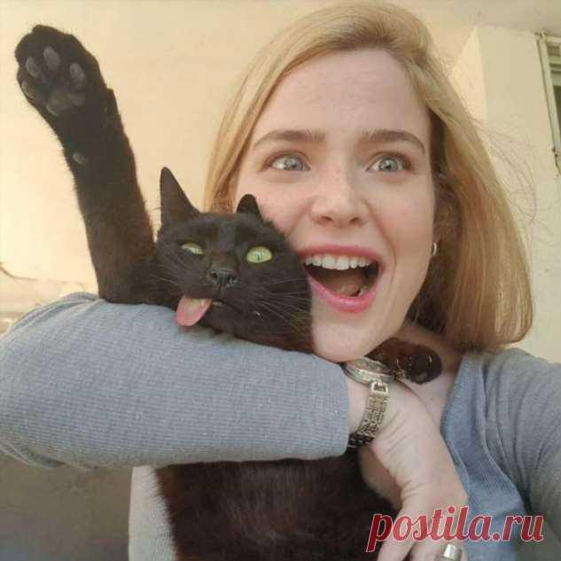 Котейка с высунутым языком нашел себе семью . Тут забавно !!!