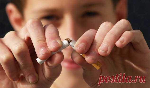 Курильщикам перекрывают кислород | Офигенная