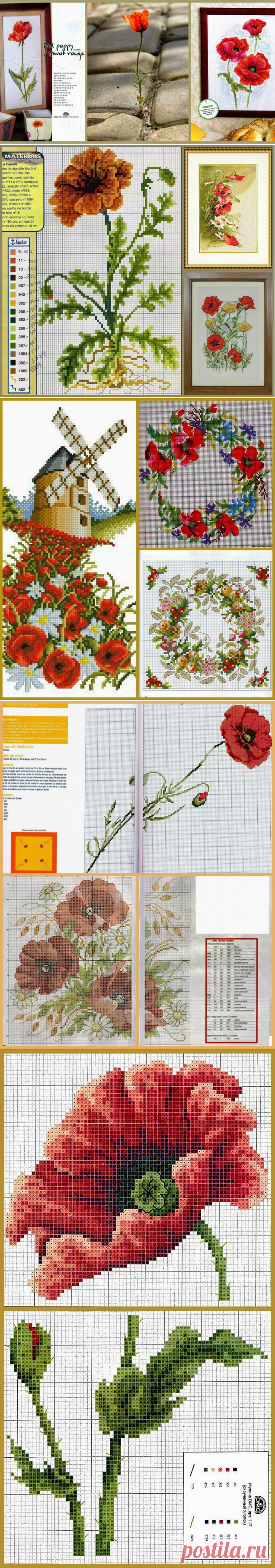 "Features lovely to heart: Embroidery cross: ""Маки. Review of designs and схем"""
