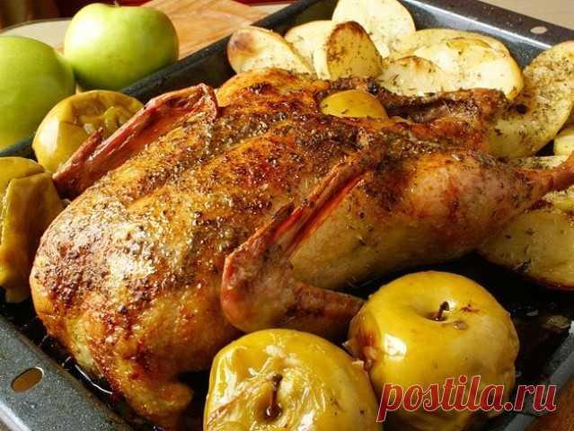 КАК ПРАВИЛЬНО ЗАПЕКАТЬ УТКУ В ДУХОВКЕ Вам понадобится: утка, яблоки, апельсины, чеснок, растительное масло, специи, соль, черный перец. Приготовление: 1. Мясо утки по своей фактуре близко к дичи, поэтому требует предварительного маринования. В начале нужно приготовить смесь для маринада. Нужно почистить чеснок, выдавить его в чашку. Насыпать туда же специи, соль, перец, налить оливкового масла и перемешать смесь. Затем в полученную смесь нужно выдавить сок одного апельсина...
