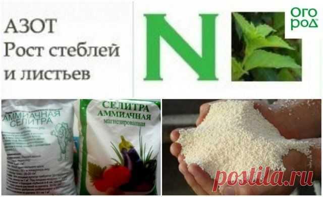 Основные правила внесения минеральных удобрений | Почва и плодородие (Огород.ru)