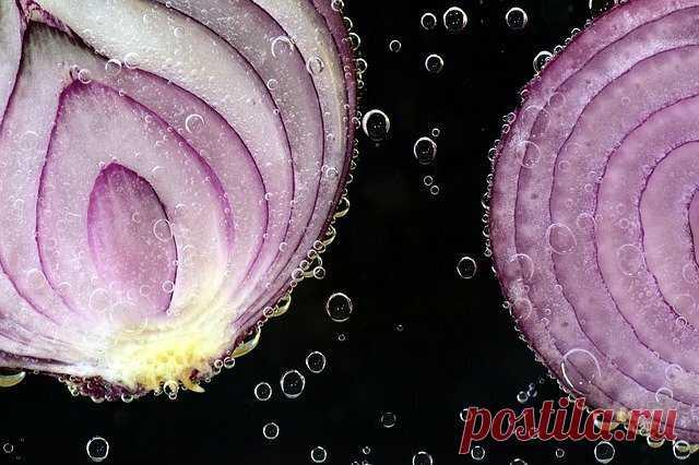 10 лучших продуктов, способных снизить уровень холестерина | Полезная Еда | Яндекс Дзен