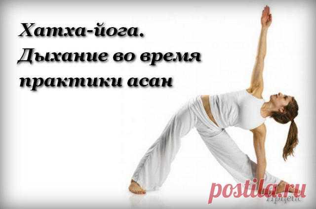 Хатха-йога для начинающих — 22