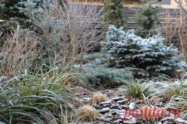 Project of week: An all-weather garden on 7 hundred parts