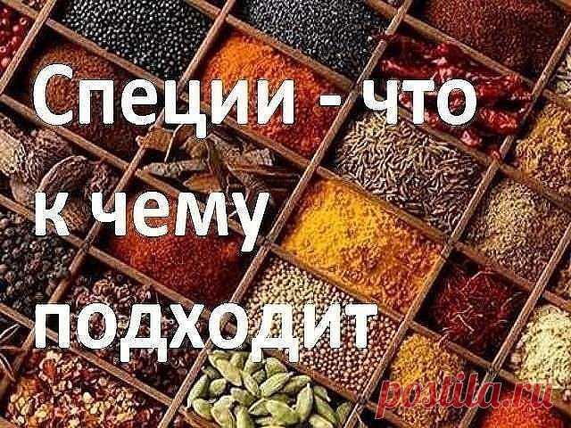 ДЛЯ МЯСА: красный, черный, душистый перец или гвоздика, майоран, тимьян, тмин, куркума, лук, орегано. ДЛЯ ПТИЦЫ: тимьян, майоран, розмарин, шалфей, чабрец, базилик. ДЛЯ РЫБЫ: лавровый лист, белый перец, имбирь, душистый перец, лук, кориандр, перец чили, горчица, укроп, тимьян. ДЛЯ ГРИЛЯ: красный перец, душистый перец, кардамон, тимьян, майоран, мускатный орех и мускатный цвет, тмин, имбирь, перец чили. ДЛЯ ДИЧИ: тимьян, душица обыкновенная, душистый перец, красный перец, м...