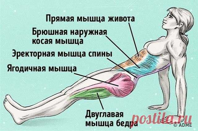 Exercise which will help to burn fat and to correct a bearing