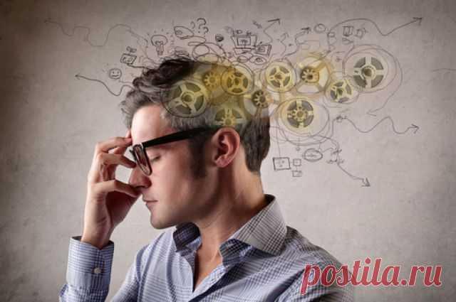 Тренируем мозг. Как сделать ум острее? Возрастные изменения в мозге начинаются очень рано - уже в 30-40 лет мозг теряет миллиарды клеток.