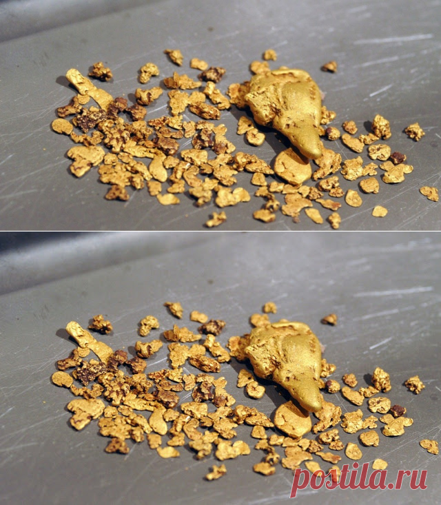 Scientists Discover How Bacteria Changes Ions Into Gold