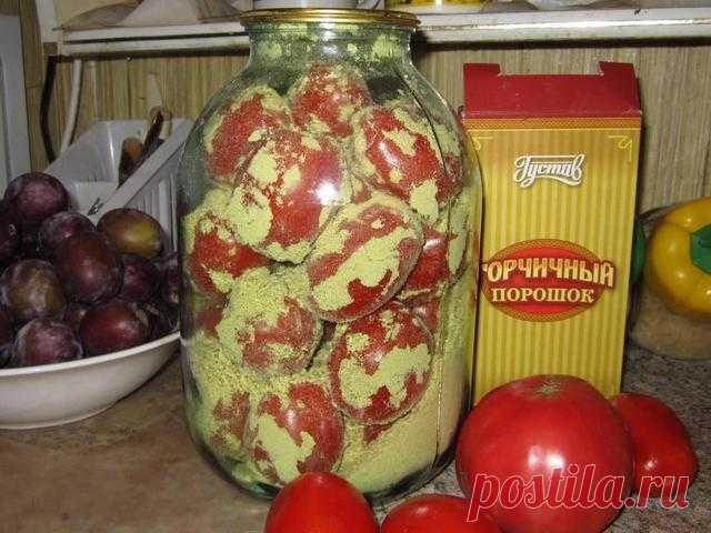 Как сохранить помидоры свежими надолго?