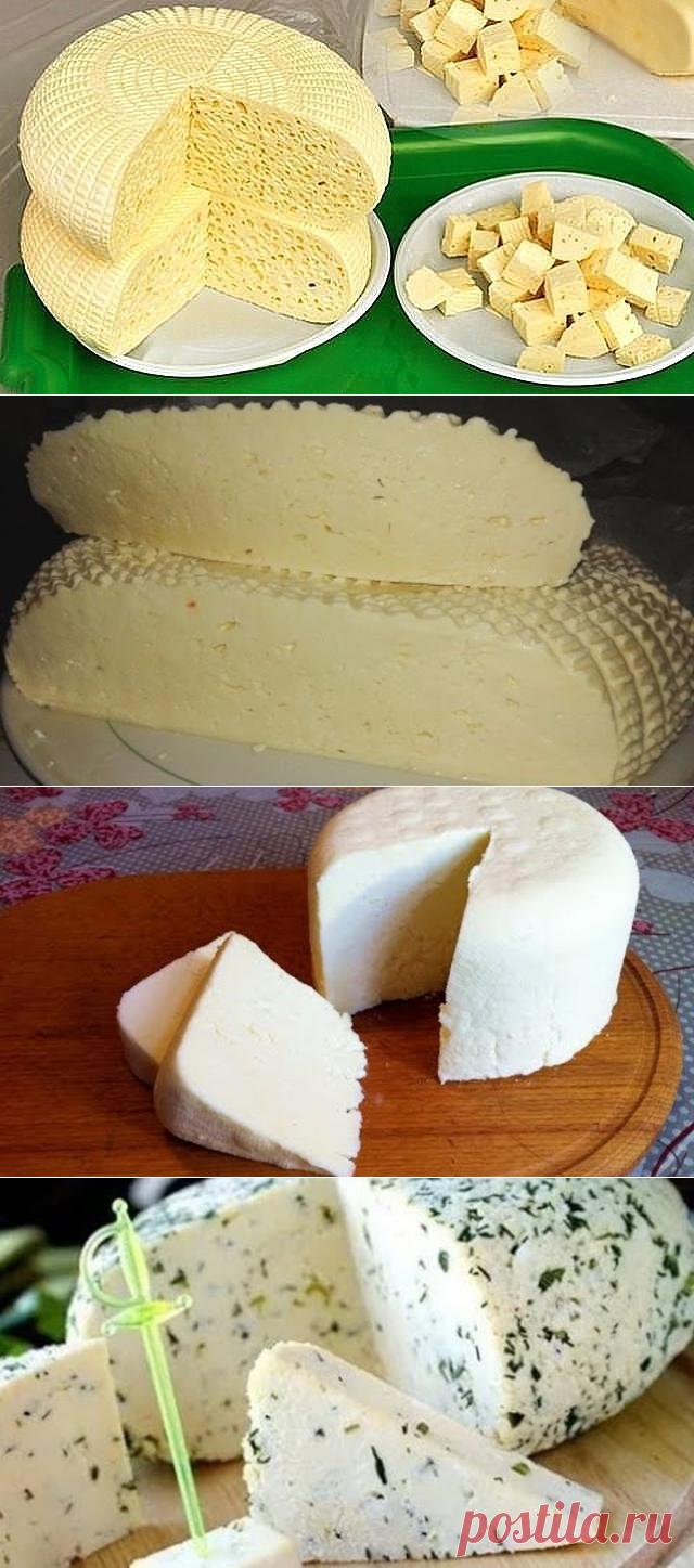 сыр из творога рецепт с фото пошагово построить