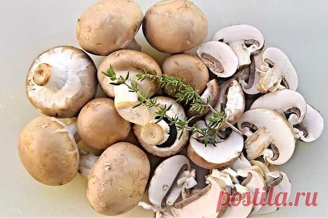 Какие грибы считаются вкуснее и полезнее: шампиньоны или вешенки - Мужской журнал JK Men's Самыми популярными грибами среди потребителей считаются шампиньоны и вешенки.Причиной этого становится их легкодоступность. Ведь необязательно за грибами идти в лес, эти вкуснейшие плоды можно найти в любом магазине, круглый год.