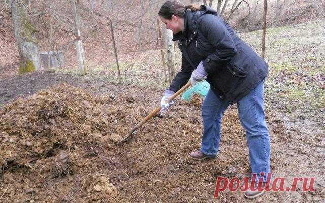 Как делать плодородную землю из песка: пошаговая инструкция Каждый огородник мечтает об идеальной почве на участке – рыхлой, мягкой, плодородной. В такую брось семена любой культуры, поливай время от времени, да получай по осени отменный урожай. Увы, на практи...