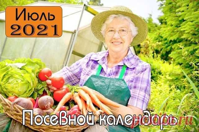 Лунный посевной календарь на июль 2021 для садовода, огородника и цветовода