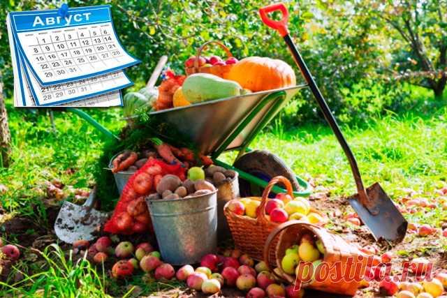 Благоприятные дни в августе 2021 годадля садоводов и огородников