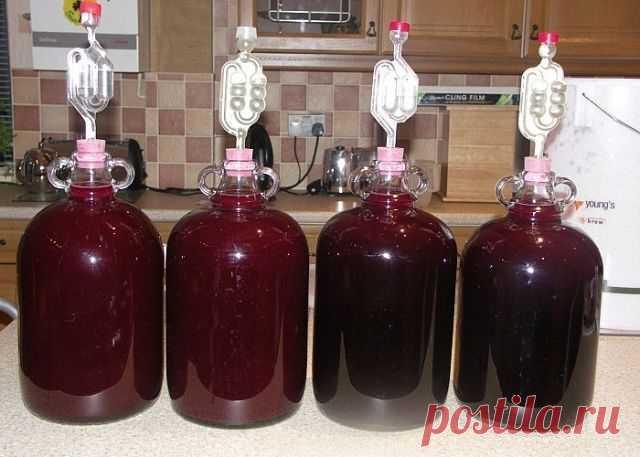¡El VINO SABROSO De casa de ciruelo por la receta del vinicultor conocido!\u000d\u000aComparto con usted la foto detallada por la receta.sohranyayte\u000d\u000aPara la receta clásica de la vino de la ciruela es necesario tomar: \u000d\u000a10кг las ciruelas, 2 kg del azúcar,\u000d\u000a 50 g de la levadura.\u000d\u000aEl modo de la preparación.  \u000d\u000aLas ciruelas es lavado, quitamos los huesos, inundamos con la cantidad de agua pequeña y es cocido hasta la blandura.
