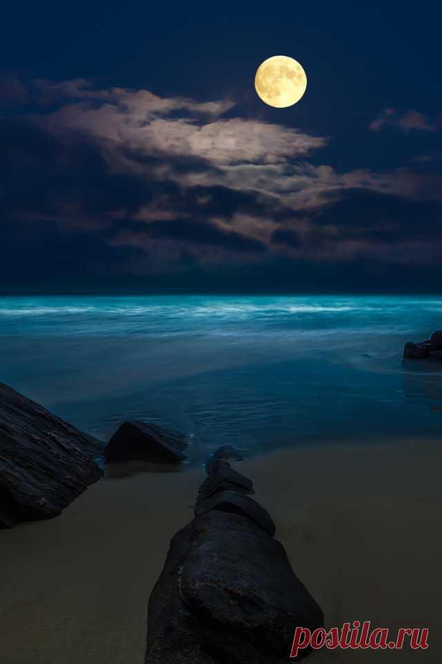 Скачать обои море, пляж, ночь, скалы, луна, полнолуние, раздел пейзажи в разрешении 640x960