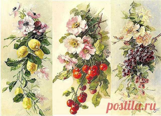 Картинки ягоды и фрукты декупаж прованс, днем