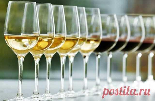El vino de casa de la uva: 14 recetas simples de la foto