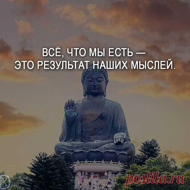 буддийские мудрости о жизни в картинках этом