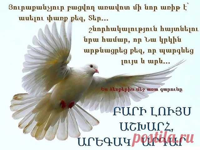 Бари луйс открытки на армянском