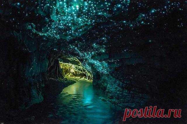 Грот в пещерах Вайтомо -