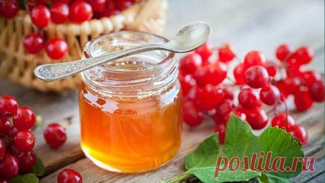 Калина с медом Калина с медом - самое лучшее лекарство и запас витаминов; можно заготовить на зиму.Ягоды калины ошпарьте кипятком и протрите через дуршлаг или сито. Добавьте к калине мед в пропорции 1:1, перемешайте и оставьте в комнате на неделю. Принимайте по 1 ст. ложке натощак - и витаминный запас на день обеспечен! При болях в горле и хрипоте. 1 ст. ложку калины залейте 1 стаканом кипятка, укутайте и настойте 2 часа. Полоскайте горло 3 раза в день при ангине, а при хр...