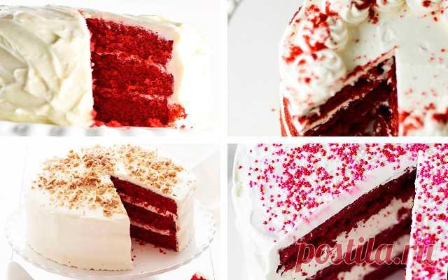Торт Красный бархат Red Velvet Cake в домашних условиях   ТестоВед