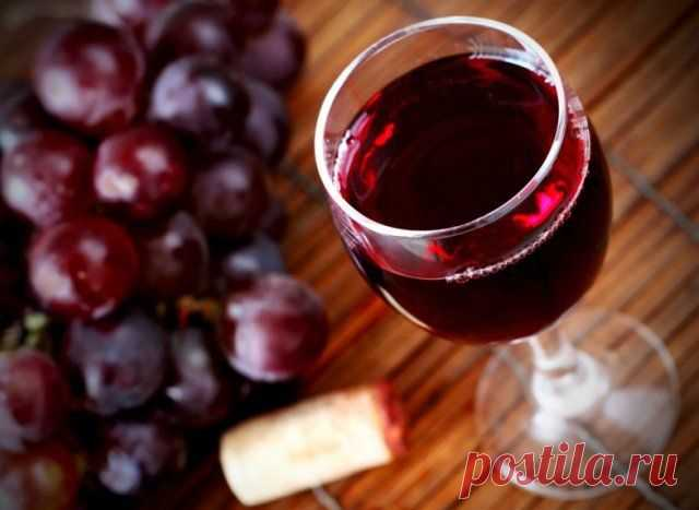 Domestic wine from grapes: 14 simple recipes with a photo