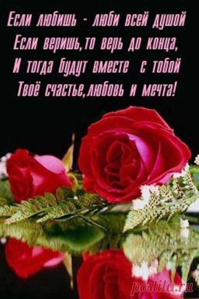 Открытки розы красивые стихами о любви