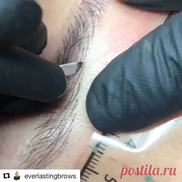 Everlasting Brows Academy в Instagram: «Amazing video of #monikamicroblading repeating her hair strokes 💗we could watch this all day!  #repost @everlastingbrows  Contact us for…» 56 отметок «Нравится», 2 комментариев — Everlasting Brows Academy (@everlastingbrowsme) в Instagram: «Amazing video of #monikamicroblading repeating her hair strokes 💗we could watch this all day!…»