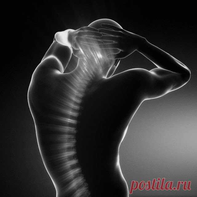Дыхание позвоночным столбом: простое упражнение для здоровья спины — Калейдоскоп событий