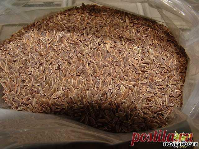 Чтобы забыть о давлении нужно взять горсть семян укропа. Через неделю будете здоровы!  Высокое давление придет в норму, исчезнут запоры, боли в желудке и мочевом пузыре, пройдет недержание мочи и кала, если в заварочный чайник насыпать столовую ложку с горкой семян укропа и залить их пол-литрами кипятка. Накрыть чайничек салфеткой или укутать полотенцем на 40 минут, чтобы семена хорошо запарились и отдали все ценные вещества в воду. Полученное лекарство нужно пить прямо из...