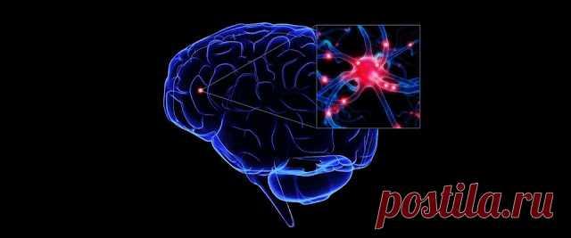 НАРОДНЫЕ СРЕДСТВА УЛУЧШЕНИЯ МОЗГОВОГО КРОВООБРАЩЕНИЯ       Гипертония и атеросклероз — две основные причины, приводящие к нарушению мозгового кровообращения.   Именно из-за них развивается паралич, падает зрение, теряется координация, нарушается д…
