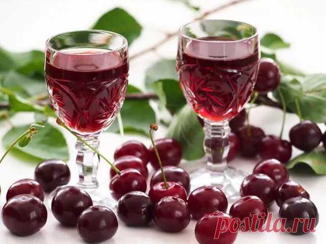 Вино из вишни в домашних условиях — простой рецепт приготовления