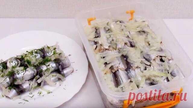 Домашняя вкусная малосолёная рыбка, которую можно кушать хоть каждый день | Страсти по рыбалке | Яндекс Дзен