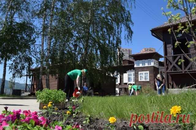 Когда и как косить траву на садовом участке? В плодовом саду, расположенном на достаточно обширной площади, где междурядья залужены, необходимо периодически скашивать растущую траву.