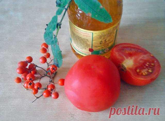 Что приготовить из красной рябины: блюда, напитки и консервация   Статьи (Огород.ru)
