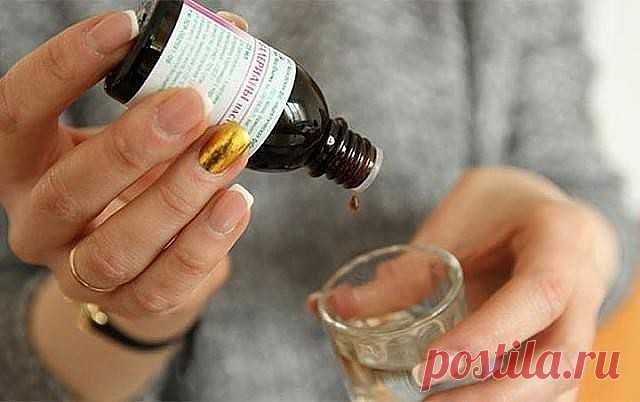 Cancer medicine. Keep to yourself!\u000d\u000aAs it strange sounds, but the fact remains – this extract treat cancer in Bulgaria. And moreover – give 100% a guarantee that they can cure cancer as before operation, and later. The recipe is surprisingly simple. By the way, in Russia there are people who claim that this recipe they recovered from cancer. Perhaps together with reception of medical supplies. I cannot approve something therefore just I issue the recipe. \u000d\u000aTo pick elder berries a cher...