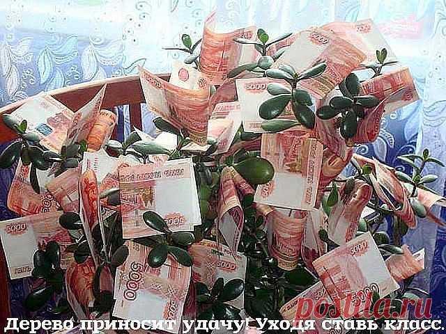 Будьте сказочно богаты, И достатку очень рады! Пусть вам деньги помогают, И мечты осуществляют!