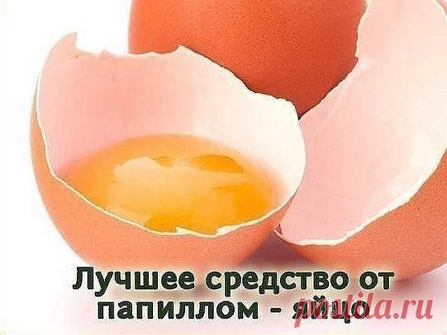 Лучшее средство по борьбе с папилломами - яйцо  Куриное яйцо помогает избавиться даже от многочисленных папиллом. Но его можно использовать только тем людям, которые не склонны к аллергическим реакциям. Наружное применение может спровоцировать аллергию даже в том случае, если вы без каких-либо проблем едите эти самые яйца. Если вы сомневаетесь, проведите тест – на небольшой участок кожи в области локтевого сгиба нанесите выбранное средство и оставьте на 10 минут. Если алле...