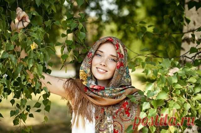 Береза от авитаминоза. Какие деревья имеют полезную листву? - Садоводка