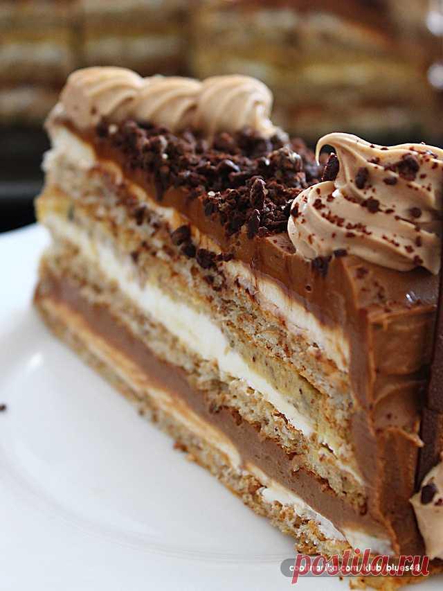 фото и название тортов того, зависимости размеров
